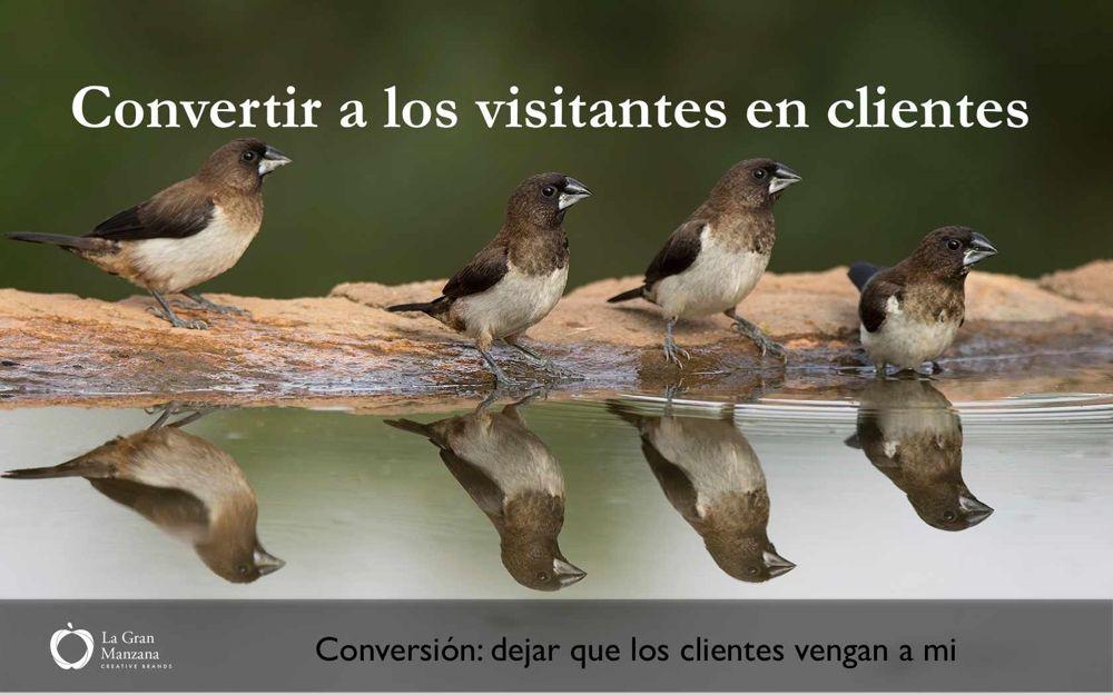 conversion-clientes